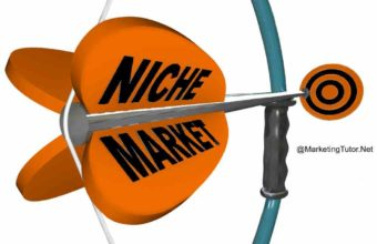 Niche Marketing Explain with Examples