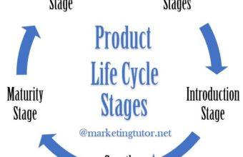 What is Product Life Cycle