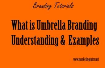Umbrella Branding Definition & Examples